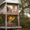 Amazing-Tree-house
