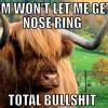 Angsty emo teen bull