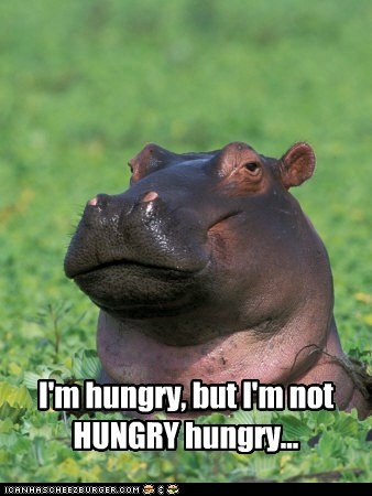 hungry-hippo