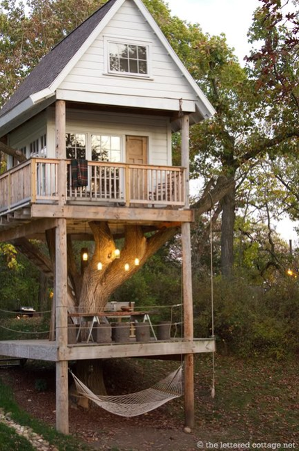 Amazing-Tree-house
