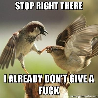 Bird doesn't want to hear it.